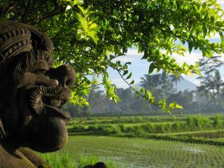 Family quiet 2room WIFI Pool REAL Bali near Ubud - Ubud vacation rentals