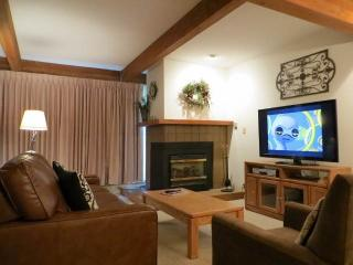 Cozy 2 bedroom Crested Butte Condo with Hot Tub - Crested Butte vacation rentals