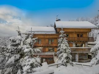 Bright 4 bedroom Vacation Rental in Meribel - Meribel vacation rentals