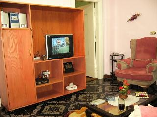 Beautiful, large Apartment in Dokki-Cairo for rent - Cairo vacation rentals