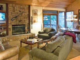 Nice House with Television and Microwave - Mammoth Lakes vacation rentals