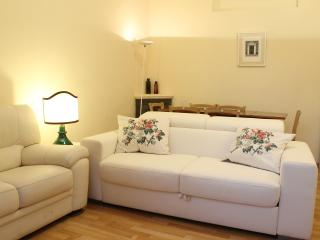 Four bedroom apartment near Piazza San Marco, wifi, satellite TV - Florence vacation rentals