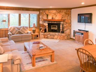 Mountainback 15 - Mammoth Lakes vacation rentals