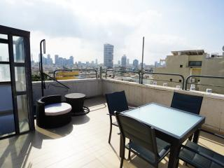 Duplex loft apartment 3 terraces - Tel Aviv vacation rentals