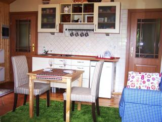 Warm wood house with fireplace - Milki vacation rentals
