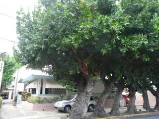 Caribe 83, VILLA, WIFI, PARKING, up to 10 guests - San Juan vacation rentals