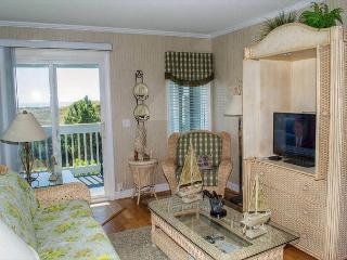 Beautiful Oceanfront Condo with many Upgrades! - Atlantic Beach vacation rentals