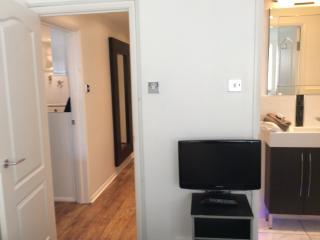 NEW!!!! Stylish Apart: 30 mins to London Victoria - London vacation rentals