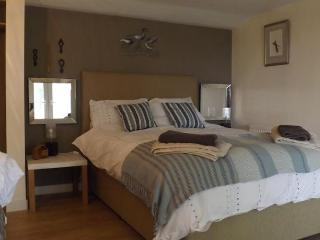 The Swallows Guest House Bed and Breakfast - New Quay vacation rentals