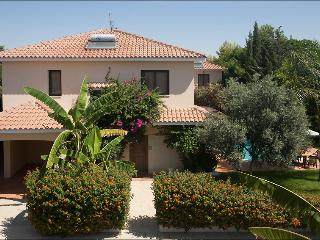 Regin.4BDR,private pool,garden,parking,2km fromsea - Oroklini vacation rentals