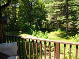 River front tree house for rent - Bancroft vacation rentals