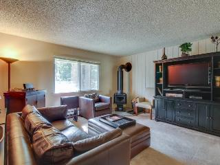 Slopeside w/ fireplace & walking distance to resort fun - Alpine Meadows vacation rentals