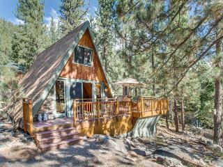 Romantic and cozy cabin near Donner Lake set among the towering pines! - Truckee vacation rentals