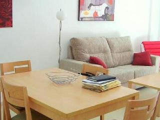 4 bedroom Apartment with Garden in Godella - Godella vacation rentals