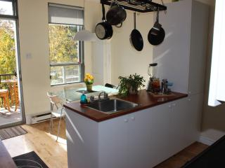 COZY & BRIGHT 1 BEDROOM APT +  TERRACE ON ROSEMONT - Montreal vacation rentals