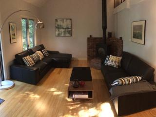 Gorgeous 2BR Lakefront Condo in Dartmouth/Sunapee - Grantham vacation rentals