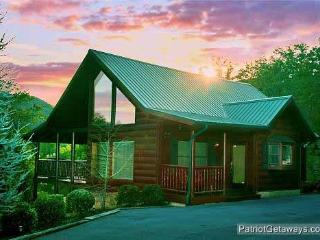 FLYING WITH EAGLES - Sevierville vacation rentals