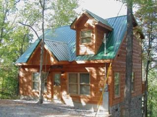 Lumber Jack Lodge - LUMBER JACK LODGE - Gatlinburg - rentals