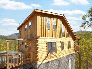 SHY BEAR - Pigeon Forge vacation rentals