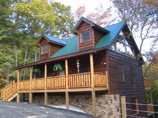 DRAGONFLY - Gatlinburg vacation rentals