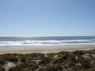 Beach House in Pajaro Dunes, 81 Puffin Ln - Pajaro Dunes vacation rentals