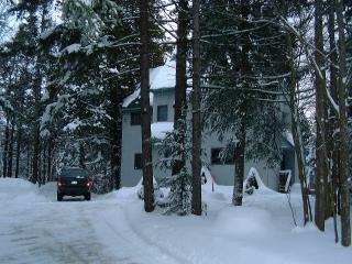 3 BR Contemporary Home in Ludlow-Okemo Area - Mount Holly vacation rentals