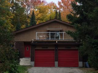 House among trees by the lake - Midland vacation rentals