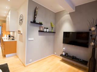 B14 Luxury apartment  down town 401 - Reykjavik vacation rentals
