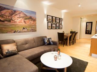 B14 Luxury apartments for groups down town - Reykjavik vacation rentals