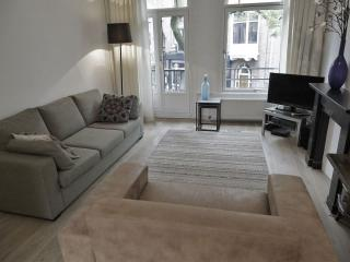 Spacious Hondecoeter Museum Square apartment in Museumplein with WiFi & balkon. - Amsterdam vacation rentals