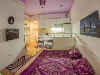 Pure pleasure at nice environment! - Belgrade vacation rentals