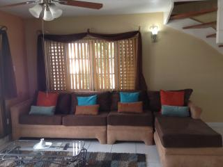 Garden Oasis 3 bedroom 3 bathroom apartment - Kingston vacation rentals
