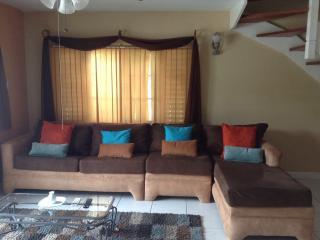 Garden Oasis 3 bedroom 3 bathroom apartment - Kingston vacation rentals