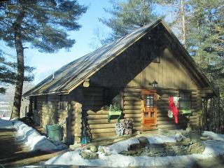 Cozy 2 bedroom House in Brandon - Brandon vacation rentals