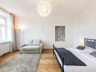 Luxury 81m2 Cityapartment Aircondition - Vienna vacation rentals