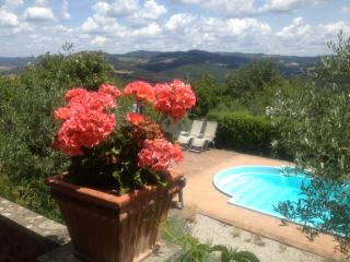 Secluded house. Beautiful grounds. Stunning views. - Volterra vacation rentals