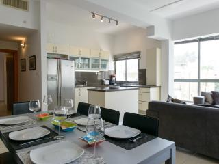 Fabulous 3 Bedroom Duplex Apartment in Tel Aviv - Tel Aviv vacation rentals
