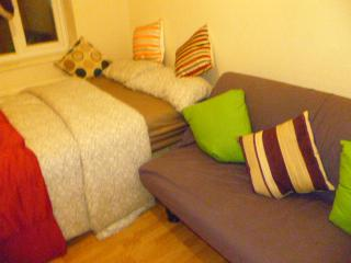 LONDON MEAD 1 BED FLAT, SLEEPS 2-8, CLOSE TO CITY. - Romford vacation rentals