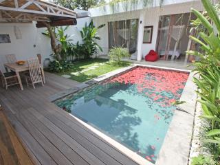Bali Seminyak 800 m from the beach, new villa, very quite - Seminyak vacation rentals