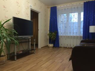 2 room apartment in the center - Yaroslavl vacation rentals
