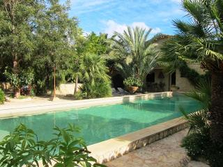 Eden Tulieses, detached cottage on scenic spot - Miravet vacation rentals