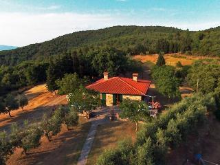 4 bedroom Villa with Dishwasher in Civitella in Val di Chiana - Civitella in Val di Chiana vacation rentals