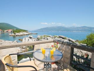 Stone house on Lustica near the sea - Krasici vacation rentals
