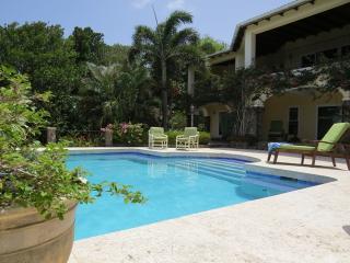 Bay Tree Villa - Luxury villa with private pool - Spring Bay vacation rentals