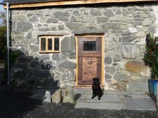 Ty Beic Country Apartments - The Stable - Bala vacation rentals