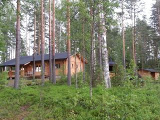 Holiday Cottage by Saimaa Lake,Suomenniemi,Finland - Suomenniemi vacation rentals
