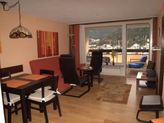 Best located 2 rooms apartment in  Davos - Davos Platz vacation rentals