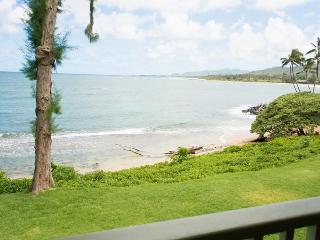 Ocean Front 2 Bedroom - Kapaa vacation rentals