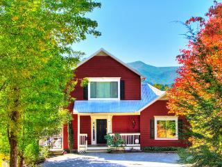 HOLIDAY HOUSE - Gatlinburg vacation rentals