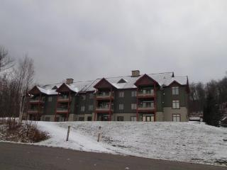 Lodges At Sunrise Village - Three bedroom Three bathroom Tastefully Decorated and Upgraded Townhouse Steps Away from the Sunrise Chairlift Health Club Privileges! - Killington vacation rentals